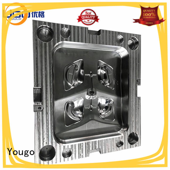 Yougo Top industrial moulds factory building
