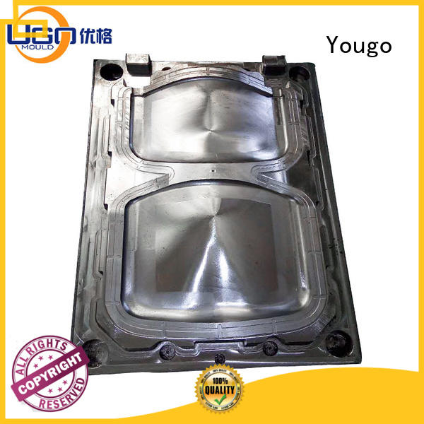 Yougo Top commodity mould factory for house
