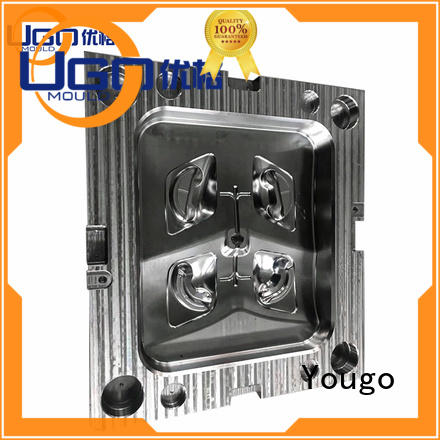 Yougo industrial molds manufacturers project