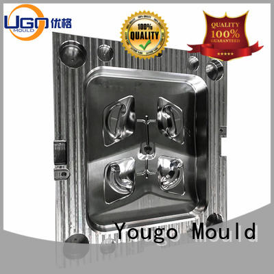 Yougo industrial moulds suppliers project