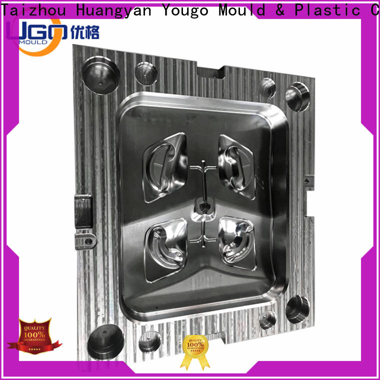 Custom industrial mould company project